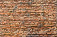 Schmutz-Wandhintergrund des roten Backsteins Stockbilder