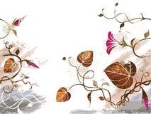 Schmutzblumenhintergrund stockbild