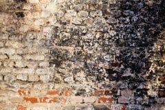 Schmutzige Backsteinmauer Lizenzfreies Stockbild