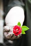 Schmutzige Hände werden oben mit Rosen gebunden oben gebunden mit Liebe Lizenzfreie Stockfotos