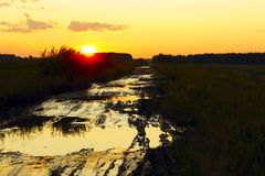 Schmutzige Landstraße unter Feldern bei Sonnenuntergang Lizenzfreie Stockfotos