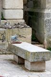 Schmutzige Schuhe der Pilgerer nähern sich einem Ruheplatz Stockfoto