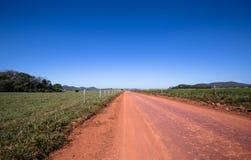 Schmutzige Straße auf dem grünen Gebiet Stockbilder