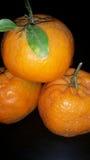 Schmutzige Tangerinen Lizenzfreie Stockfotos