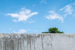 Schmutzige und alte Betonmauer mit schönem blauem Himmel am Mittagshintergrund Stockbilder
