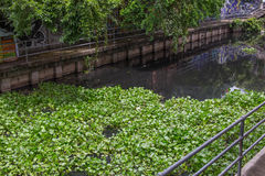 Schmutziger Abwasserkanalkanal Stockfotos