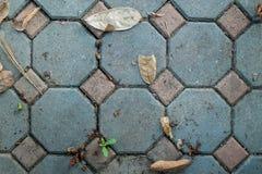 Schmutziger blauer Ziegelsteinboden Lizenzfreies Stockfoto
