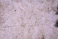 Schmutziger Styroschaum, Schaum, Polystyrenbeschaffenheit Stockbild