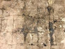 Schmutziger Untiled-Boden Stockbilder