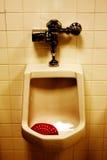 Schmutziger Urinal im Raum der Männer lizenzfreie stockbilder