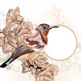 Schmutzvektorhintergrund mit Hand gezeichnetem Vogel in der Weinleseart Lizenzfreies Stockbild