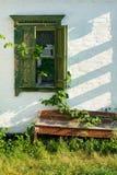 Schmutzwand mit wilden Traubenblättern und -bank Lizenzfreie Stockfotos
