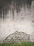 Schmutzwand und Hintergrund des grünen Grases Stockbilder