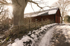 Schmutzweise in der schwedischen Winterlandschaft s Stockbild