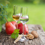 Schnapps Royalty Free Stock Images
