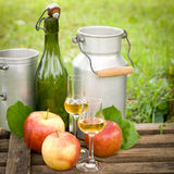 Schnapps and apples Stock Image
