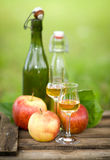 Schnapps and apples Stock Photos