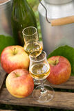 Schnapps and apples Royalty Free Stock Photos