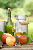 Schnapps and apples Royalty Free Stock Photo