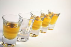 Schnapps glasses Royalty Free Stock Image