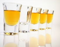 Schnapps glasses Royalty Free Stock Photos
