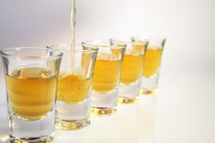 Schnapps glasses Stock Images