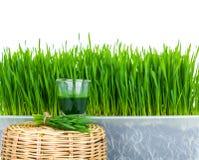 Schnapsglas Weizengras mit frischem Schnittweizengras Lizenzfreies Stockfoto