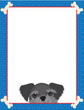 Schnauzer Frame Royalty Free Stock Images