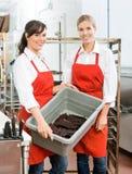 Schöne Arbeitskräfte, die Trockenfleisch vom Rind im Korb an tragen Stockfotos