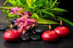 bambus purpurrote orchidee schwarze steine der zusammensetzung lizenzfreie stockfotos bild. Black Bedroom Furniture Sets. Home Design Ideas