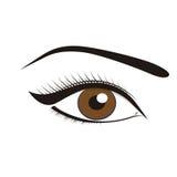 Schöne braune Augen Stockbild