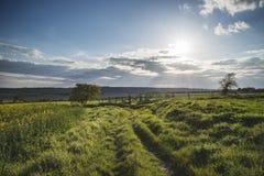 Schöne englische Landschaftslandschaft über Feldern bei Sonnenuntergang Stockbilder