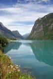 Schöne Fjordansicht Norwegen Stockbild
