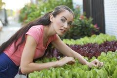 Schöne Frau am Garten-System Lizenzfreie Stockfotografie
