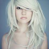 Schöne Frau mit dem ausgezeichneten Haar Stockfoto