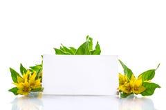 traurige karte mit gelben blumen lizenzfreie stockfotografie bild 37607027. Black Bedroom Furniture Sets. Home Design Ideas