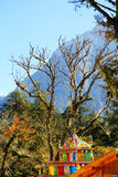 Schöne Herbstlandschaft im Hailuogou-Gletscherpark Lizenzfreies Stockbild