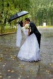 Schöne Hochzeitspaare, die im Regen küssen Braut und Bräutigam Stockbild