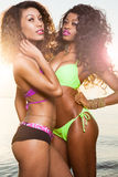 Schöne junge Afroamerikaner-Frau Stockfotos