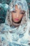 Schöne junge sexy mysteriöse Frau mit einem Schal auf ihrem Kopf, der im Wald nahe dem Öl am hellen Wintertag steht Stockbild