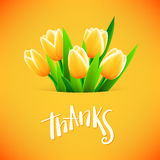 Schöne Karte mit Tulpenblumen Stockfoto