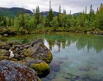 Schöne Landschaft mit Waldsee Stockfotos