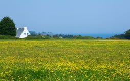 Schöne landwirtschaftliche Landschaft des Belle-Ile-en-mer Lizenzfreie Stockfotos