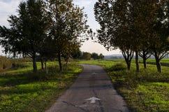 Schöne Spur während des Herbstes Stockfotografie
