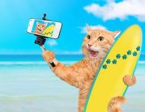 Schöne Surferkatze auf dem Strand, der ein selfie zusammen mit einem Smartphone nimmt Stockbilder