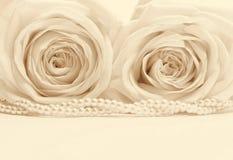 Schöne weiße Rosen tonten im Sepia als Hochzeitshintergrund weich Stockfotografie