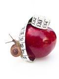 Schnecke auf Apple Stockfoto