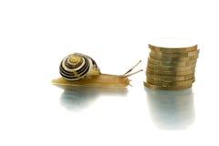 Schnecke, die Münzenstapel erreicht Stockfotografie