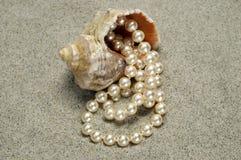 Schnecke mit Perlen auf dem Strand Lizenzfreies Stockfoto
