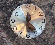 Schnecke zwei auf dem runden Uhrgesicht, wie einer Stunde und winzigen Händen, o'clock fünf Auf dem Boden stockfoto